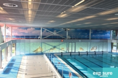 branding-zwembad-exposurepartners
